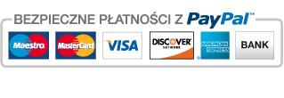 Płatności karta kredytową